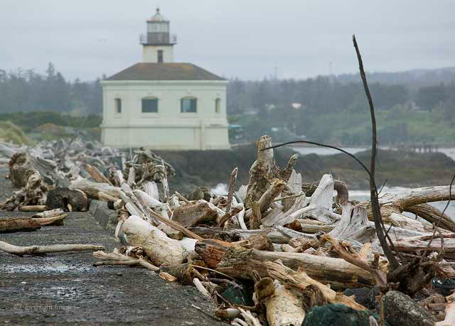 logs and lighthouse