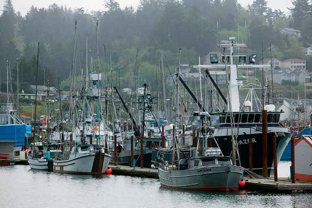 boats at newport oregon
