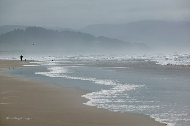 beach mist - cape kiwanda, oregon