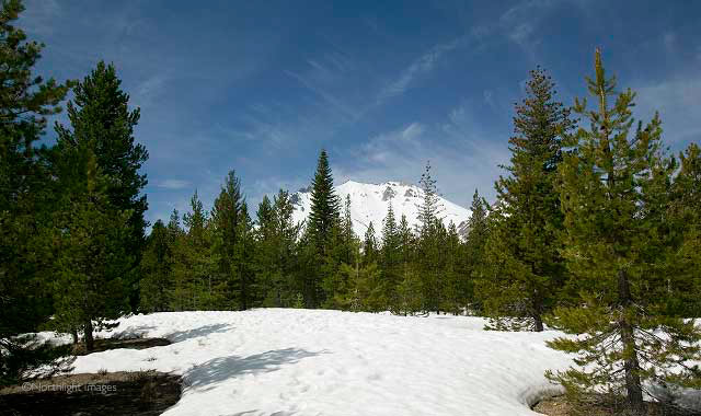 mt lassen from the devastated area