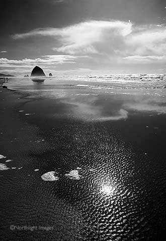 afternoon sun - haystack rock, cannon beach, oregon