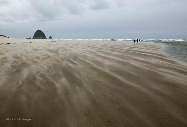 Cannon Beach - sand blowing
