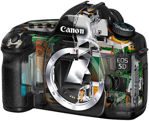 eos 5d cut away view