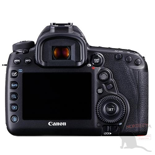 canon 5D4 rear view