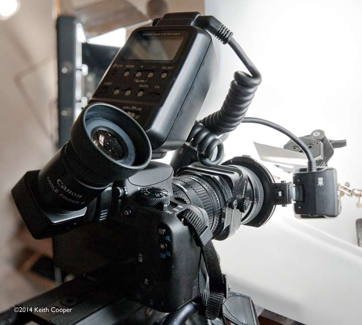 macrophotography setup with canon 100D