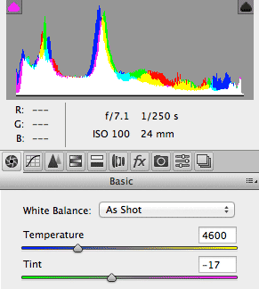 Histogram - 1Ds