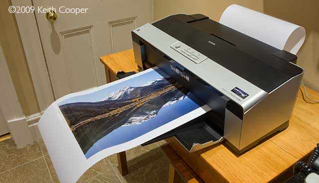 roll printing on the epson 2880