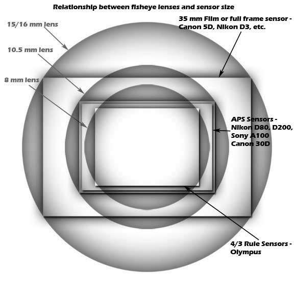 sensor sizes and fisheye lens coverage