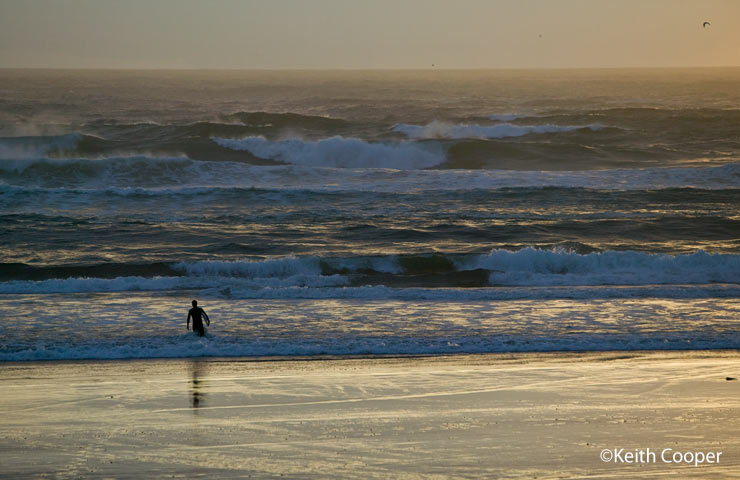 evening surfer in the Pacific