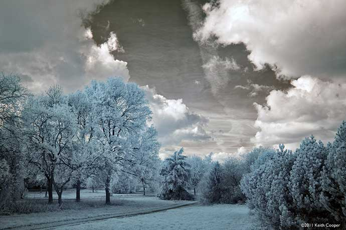 country park viewed in false colour infrared