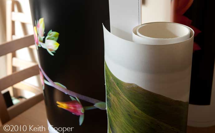 roll paper - borderless printing