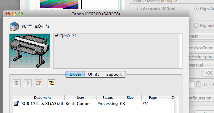 printer driver utility display