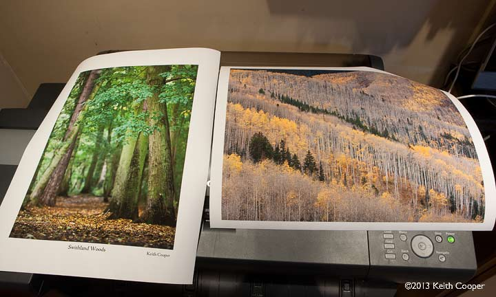 two colour test prints on hanemuhle phto rag 310 bright white