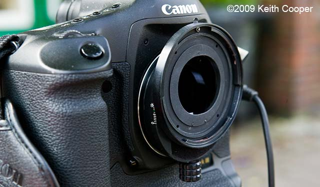 canon 1ds3 with m645 shift adapter