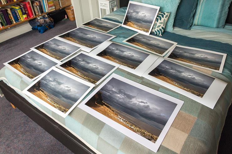 12 versions of the same photo printed on different papers