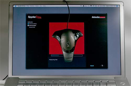 spyder on laptop screen