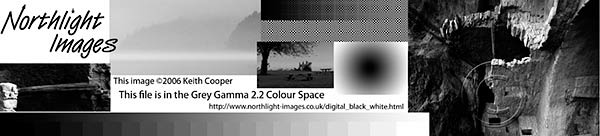 Test strip image for black and white printer testing