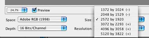 CS Raw resizing options