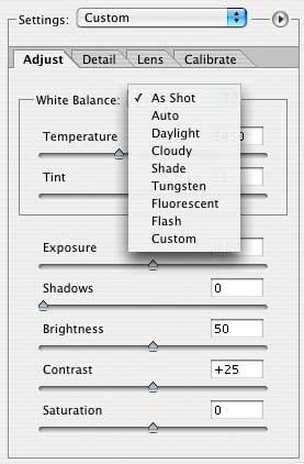 Raw white balance settings