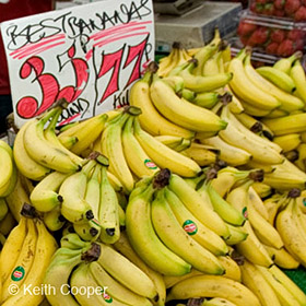 Selling too cheap - bananas