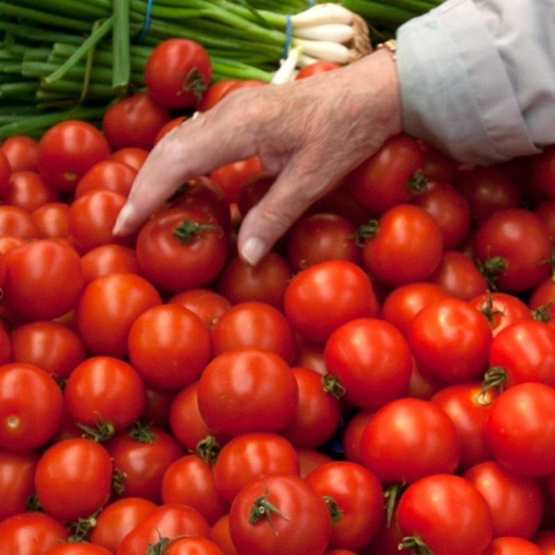 Choosing tomatos at food market