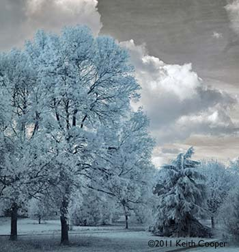 Canon 5D mk2 Infrared conversion