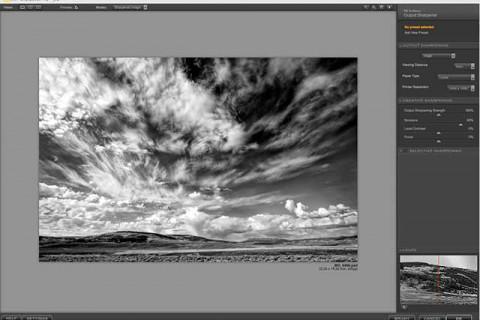 sharpened image using Nik Sharpener