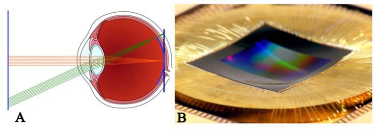 eye and curved sensor