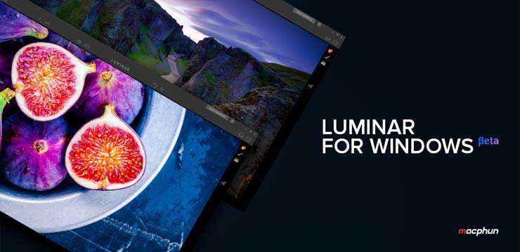 luminar windows