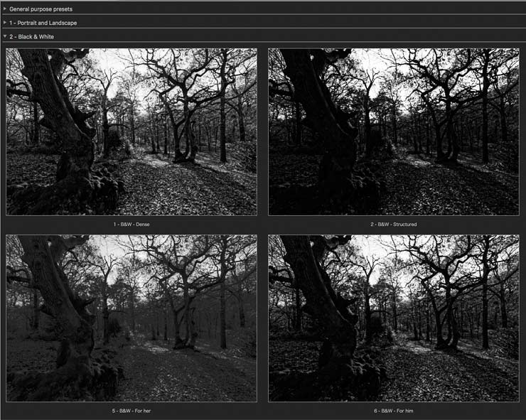 some-bw-presets