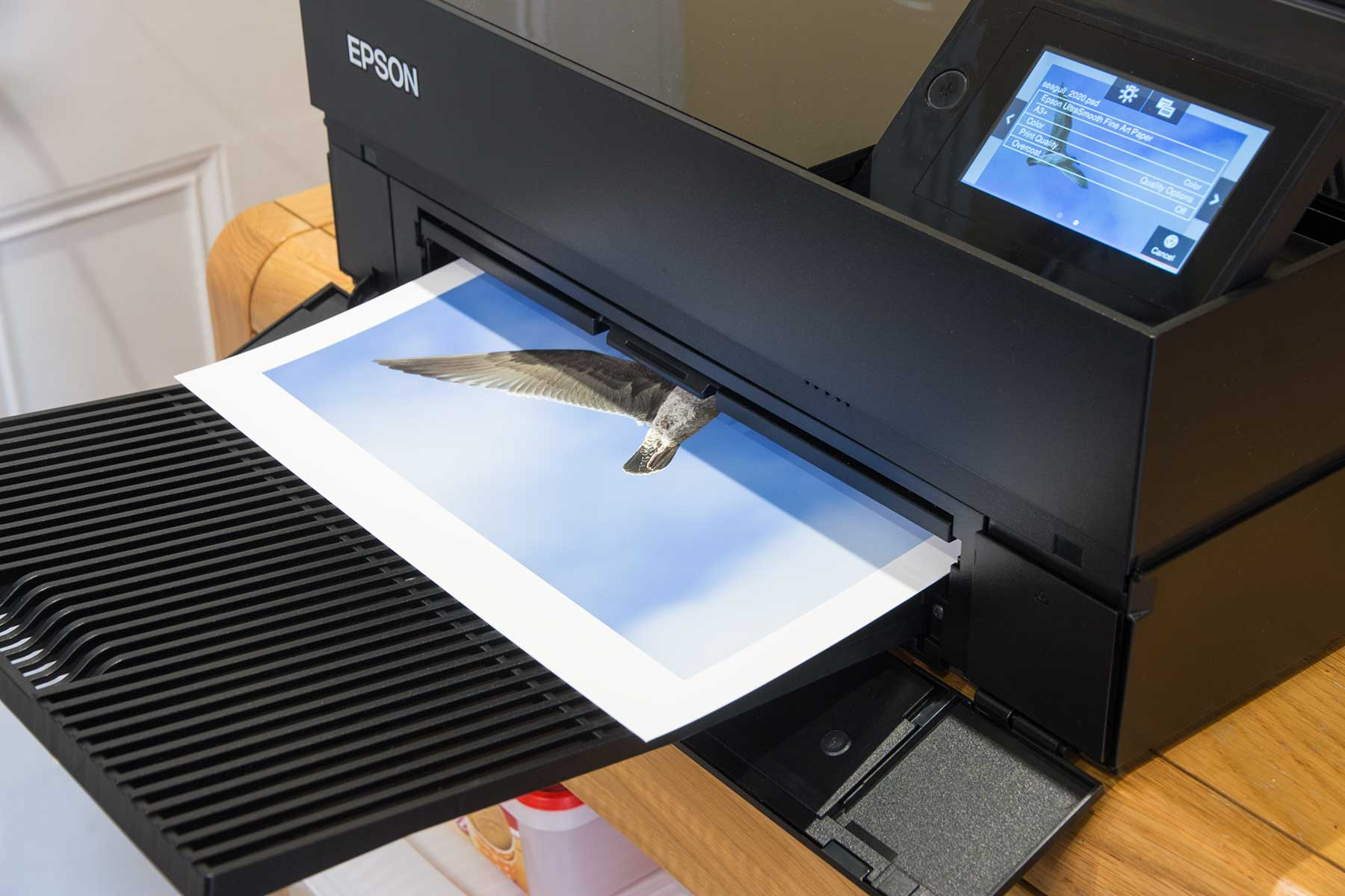 print-coming-out-of-printer